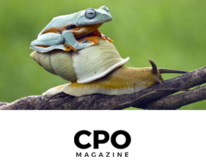 Anonos-BigPrivacy-Article-CPO-Magazine-1