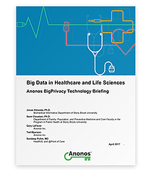 Anonos-BigPrivacy-WhitePaper-Big-Data-in-Healthcare.png