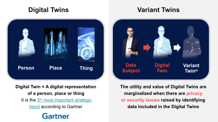 Digital Twins and Variant Twins